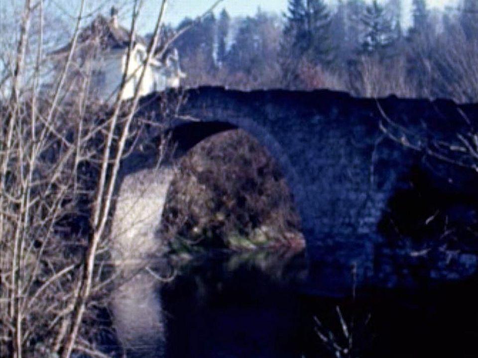 Balade le long de cette rivière secondaire dans le canton de Fribourg. [RTS]
