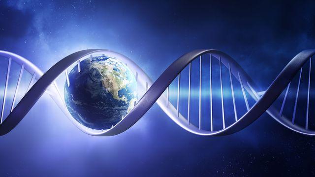 Comment la vie est-elle apparue sur Terre? JohanSwanepoel Fotolia [JohanSwanepoel - Fotolia]