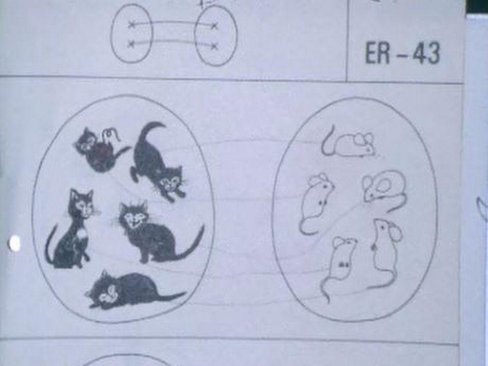 Mathématiques: les parents plus inquiets que leurs enfants. [RTS]