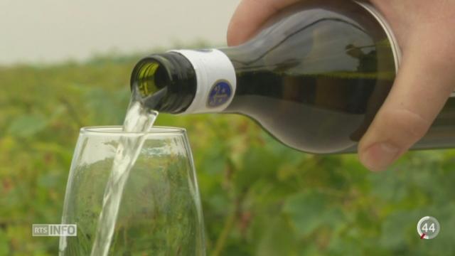 VD: un employé de la Maison Testuz a été dénoncé pour avoir dissimulé du vin lors d'un contrôle fédéral [RTS]