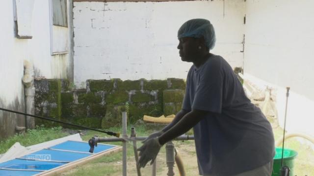 Le personnel soignant en première ligne face à Ebola [RTS]