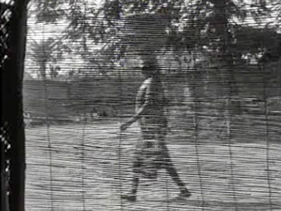 Le sultan Rei-Bouba règne sur un territoire du Cameroun hors du temps.