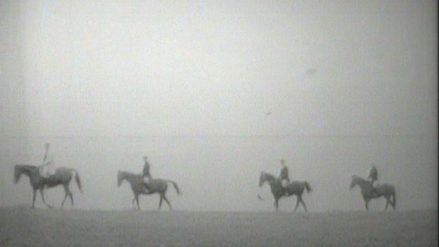 Le cheval, une histoire indissociable de celle de l'homme. [RTS]