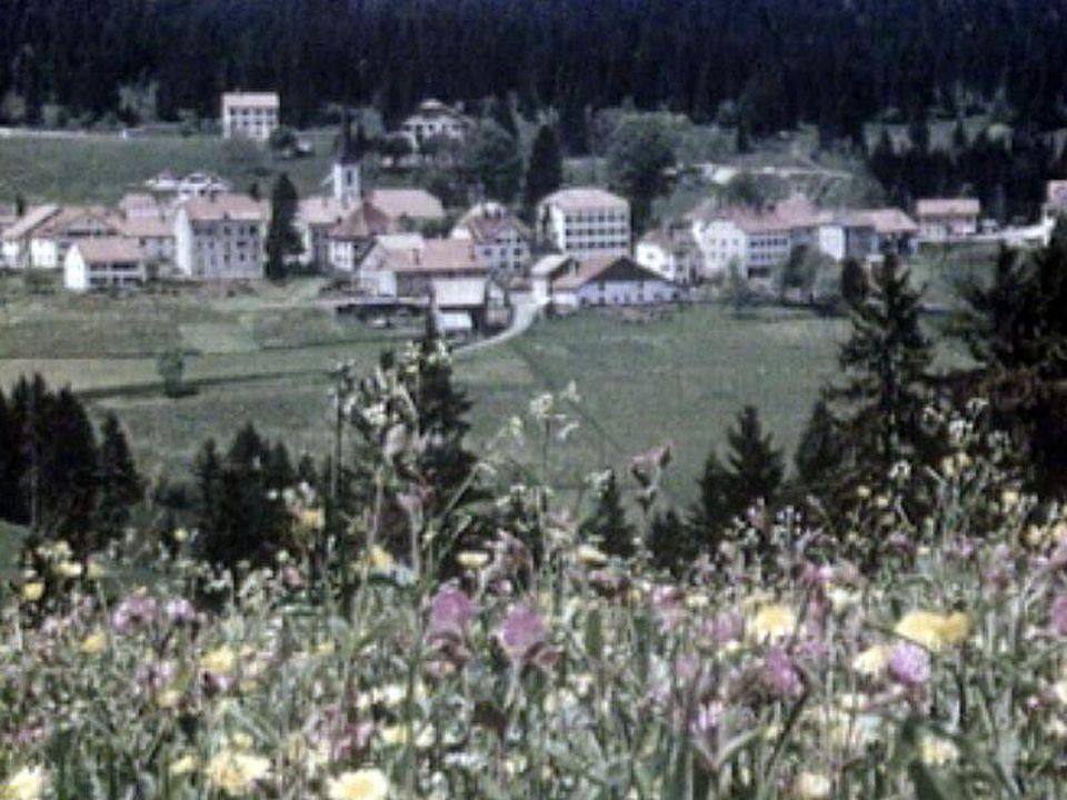 La vie au quotidien d'une ferme dans le Jura des années 50.