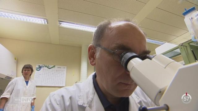 BE: l'Université a peut être trouvé une alternative aux antibiotiques [RTS]