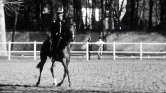 Visite à la prestigieuse Ecole d'équitation française.