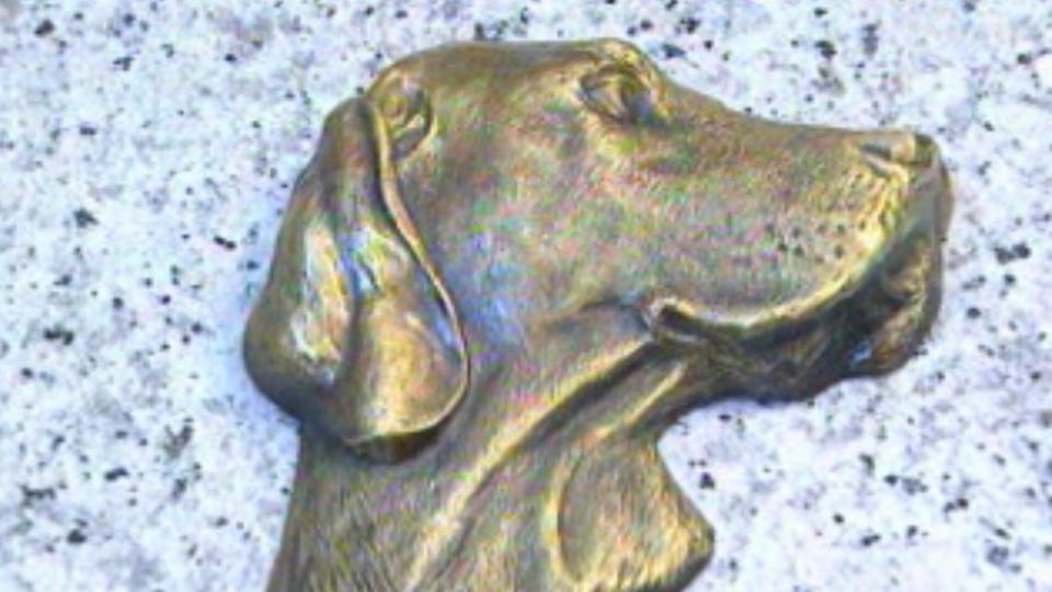 Stèle pour chien du cimetière des animaux de Lausanne. [RTS]