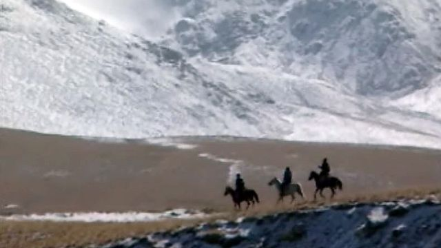 Voyage au Kirghizistan sur les traces du petit cheval Prjevalski.