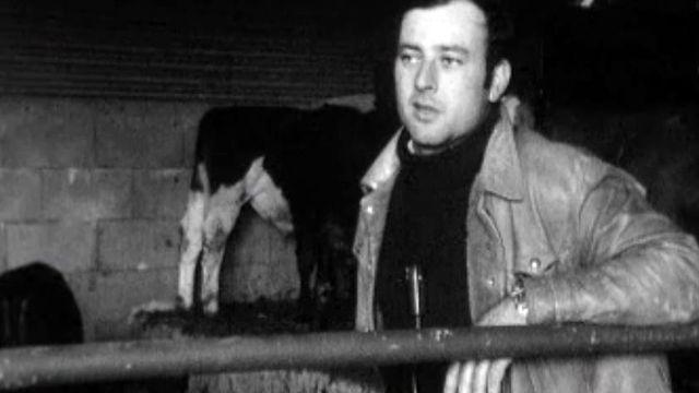 Visite chez un éleveur de viande avant la vache folle.