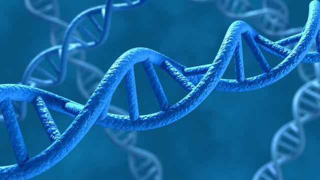 La prédisposition génétique est utilisée pour certains traitements. [norman blue - Fotolia]