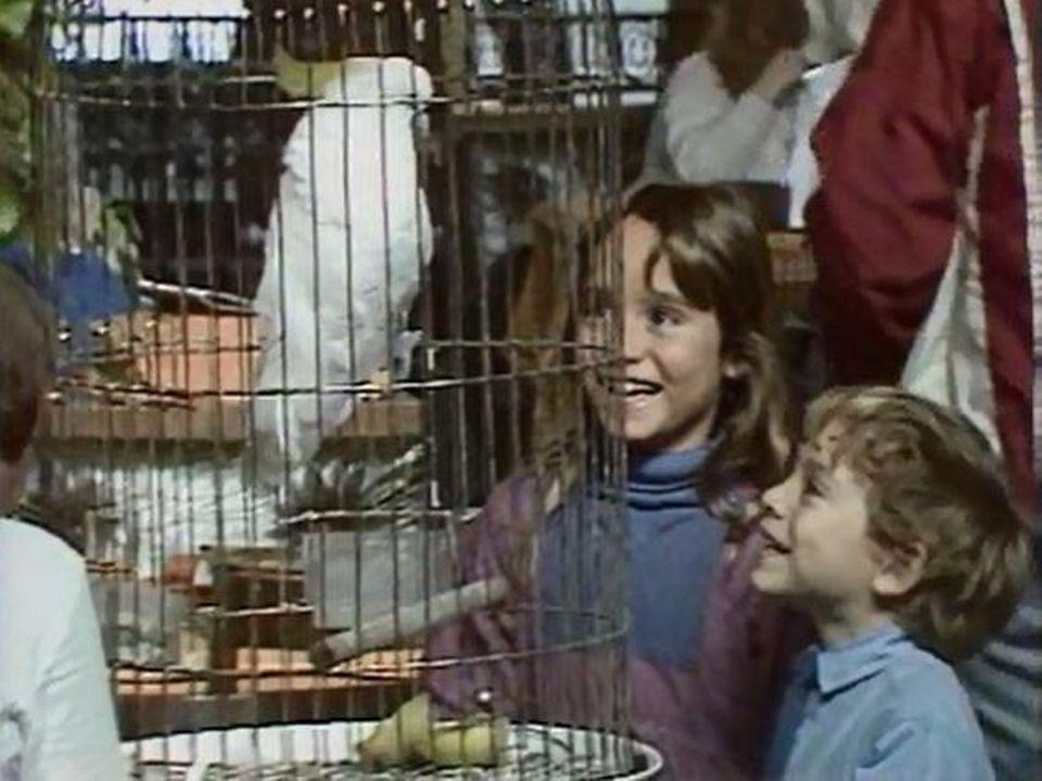 Un perroquet dans un buffet de gare, quel quiproquo! [RTS]