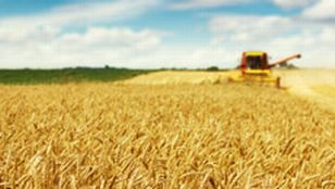 Agriculture [© Dickov - Fotolia]
