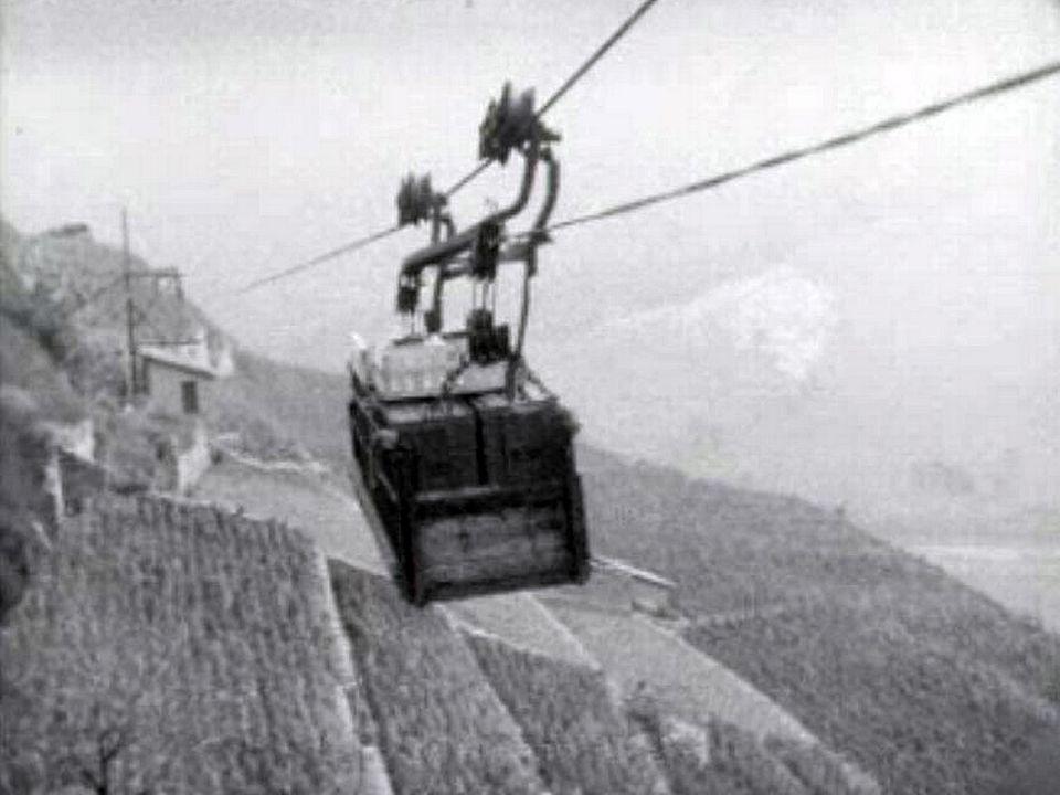 En Valais, la vendange est transportée par téléphérique.