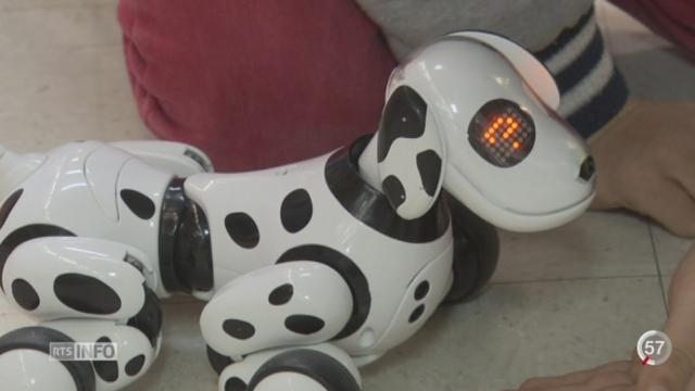 Les animaux-robots sont à la mode [RTS]