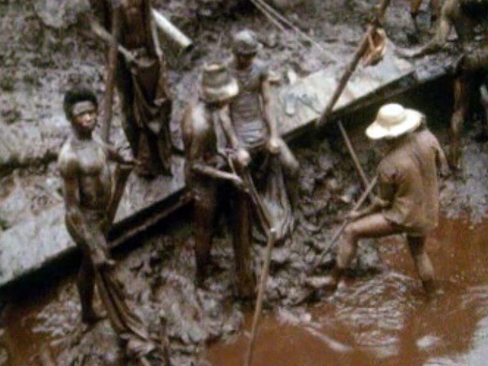 Les conditions de travail dans les mines d'or du Brésil sont harassantes.