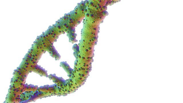 Molécule d'ADN. [APA / Science Photo Library/AFP]