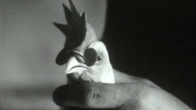 """Les poules voient la vie en rose dans """"Horizons"""" du 1er avril 1968. [RTS]"""