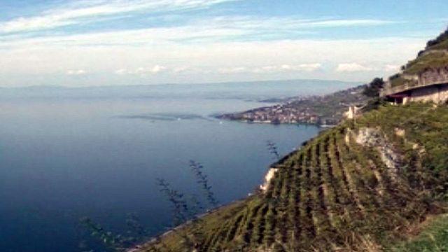 Le vignoble vaudois accède enfin au patrimoine mondial.