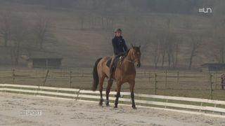 """Le Mag: découverte du """"concours complet"""" en équitation [RTS]"""