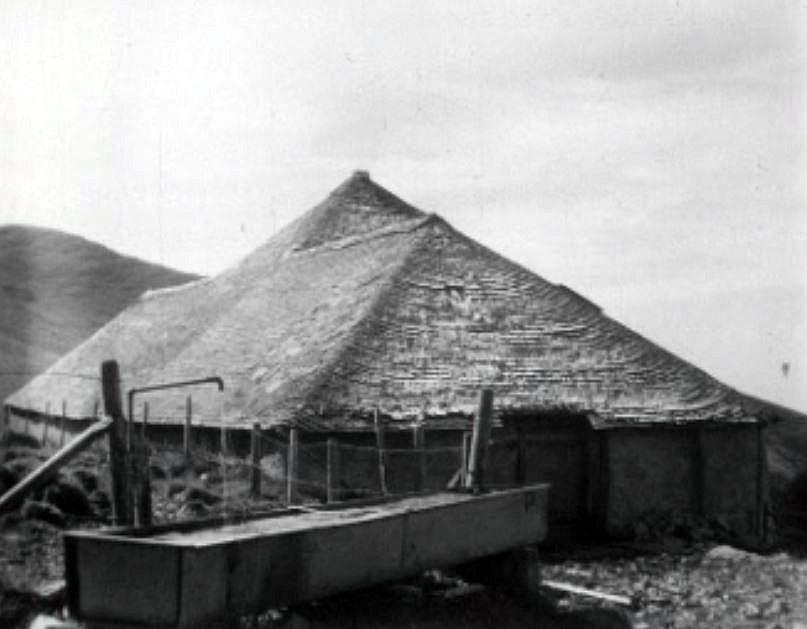 Tavillons sur le toit