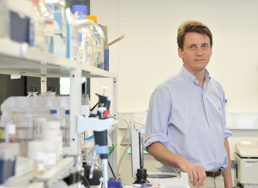 L'équipe dirigée par le Professeur Markus Stoffel a identifié un type de micro-ARN impliqué dans l'apparition du diabète.