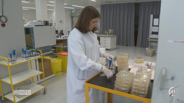 La Suisse cherche activement à contrer les microbes résistants aux antibiotiques [RTS]
