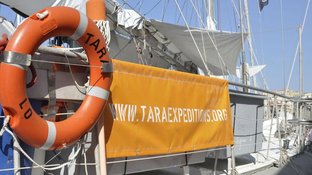Le bateau de l'expédition Tara. Gilles Bader citizenside.com/AFP [Gilles Bader - citizenside.com/AFP]