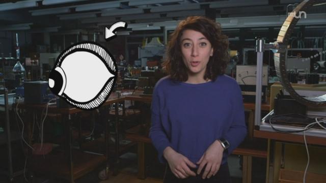La vie sur Venus : Turquoise [RTS]
