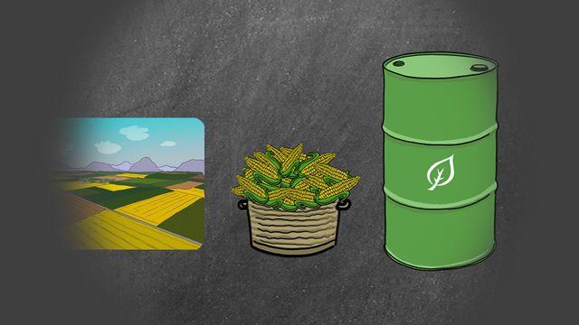 Biocarburants [RTS]