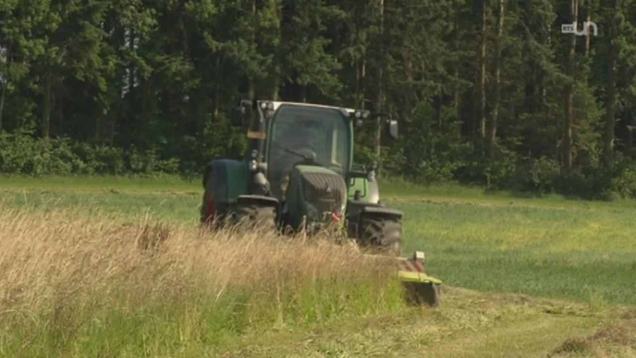 L'inquiétude autour de Monsanto [RTS]