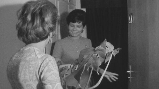 Ne pas oublier de déposer clés et plantes chez la voisine avant le départ en vacances, 1968. [RTS]