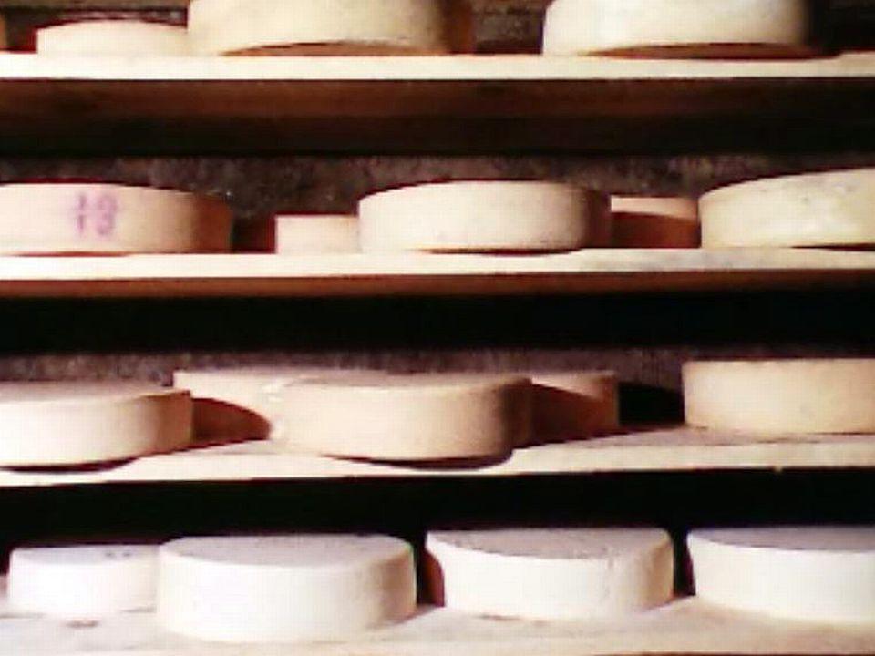 Des paysans transforment eux-mêmes leur surplus en fromage.