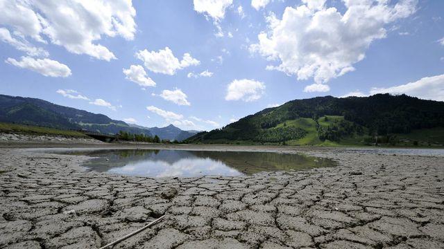 La surveillance des cours d'eau se poursuit également et le pompage agricole en rivière est interdit. [Sigi Tischler]