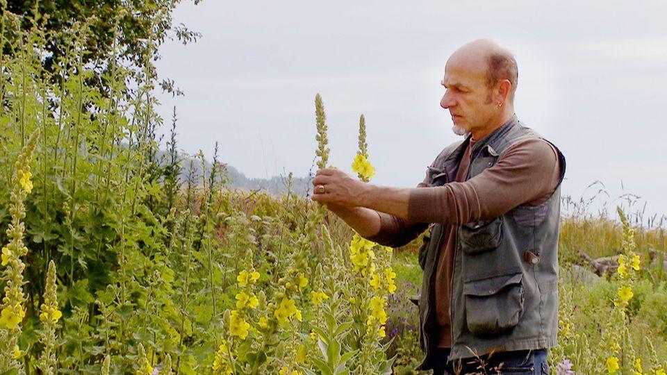 Franck Siffert, un artisan de la terre. [RTS]