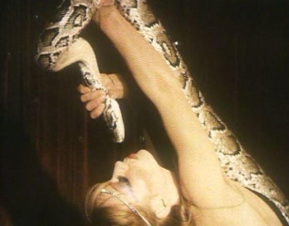 Pour qui sont ces serpents...