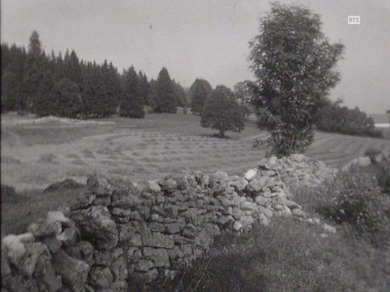 Paysages du Jura