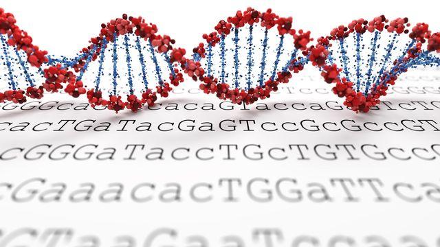 L'ADN est révélé par un séquenceur d'ADN. SSilver Fotolia [SSilver - Fotolia]
