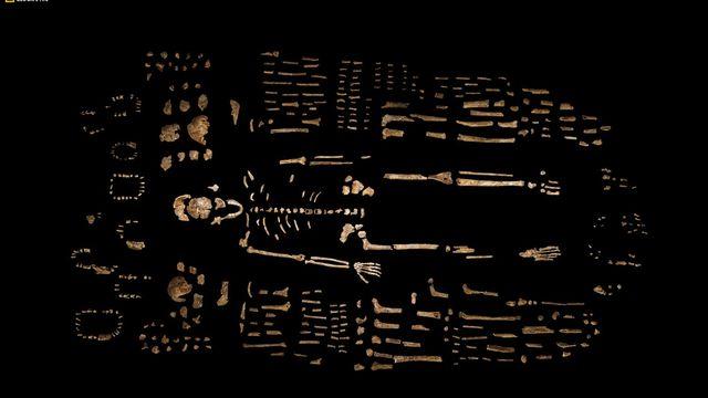 Une ancienne espèce du genre humain jusqu'à présent inconnue a été mise au jour. [ROBERT CLARK/NATIONAL GEOGRAPHIC, LEE BERGER/UNIVERSITY OF THE WITWATERSRAND - Keystone]