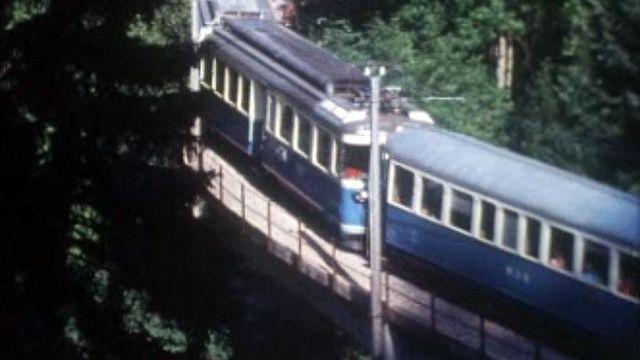 Le MOB arrivant en gare de Gstaad dans l'Oberland bernois.