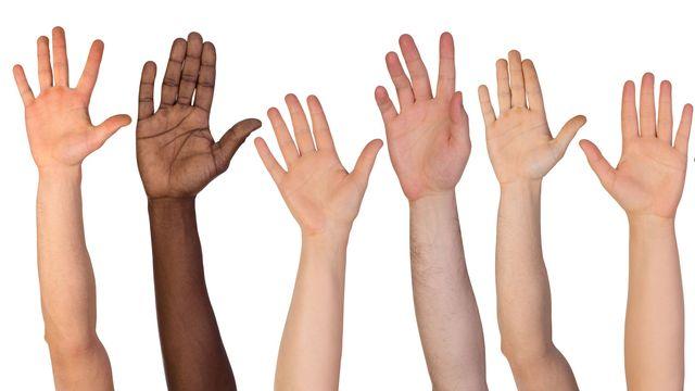 """Le concept de """"race"""" ne s'applique pas à l'humain. photka Fotolia [photka - Fotolia]"""