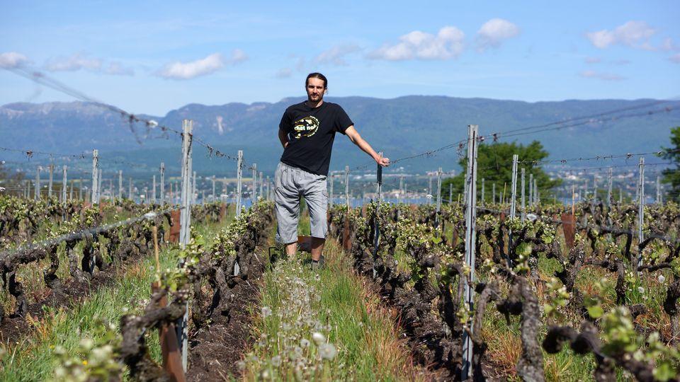 Raphael Piuz est à la fois, vigneron, encaveur, agriculteur, maraîcher, entrepreneur et musicien. [RTS]