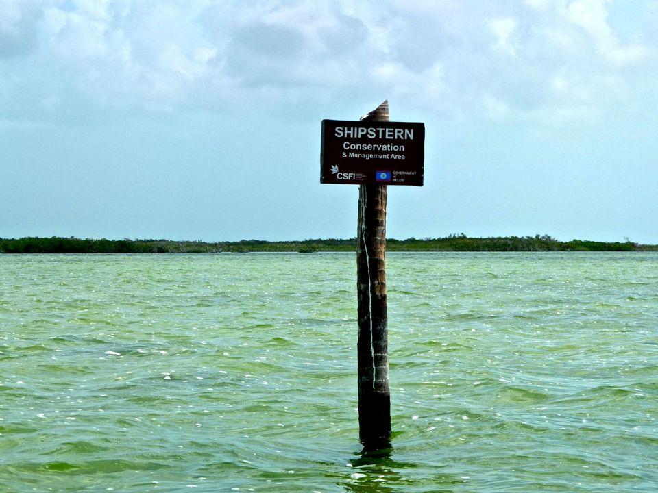 La réserve de Shipstern vue des flots... [Manuella Maury - RTS]