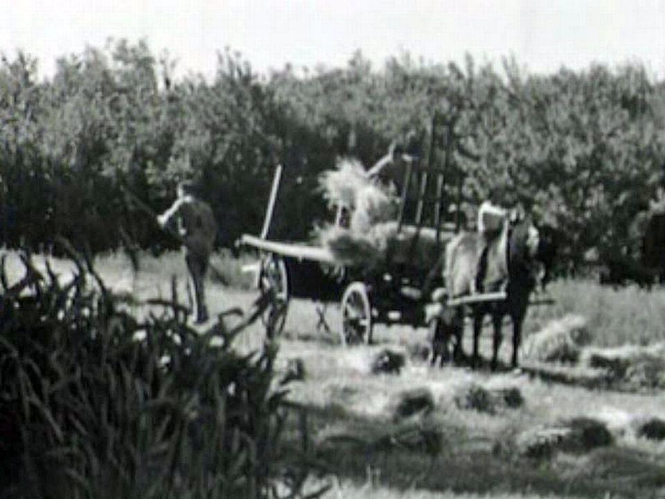 La vie d'une ferme à Crissier rythmée selon les saisons.