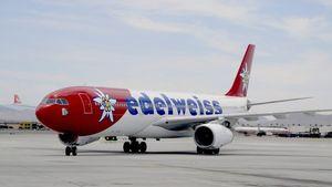 Lufthansa a annulé tous les vols de ses filiales Edelweiss et Germanwings vers Charm el-Cheikh.
