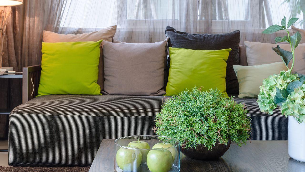 les plantes d'appartement peuvent être toxiques. [290712 - Fotolia]