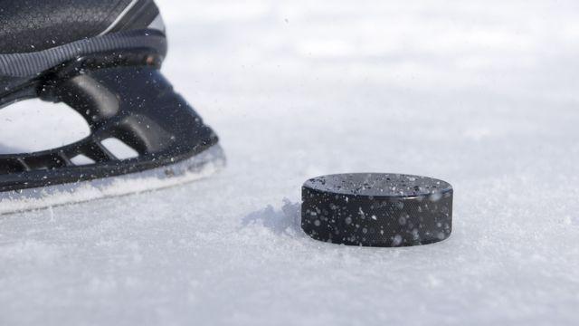 Hockey sur glace. [Irina - Fotolia]