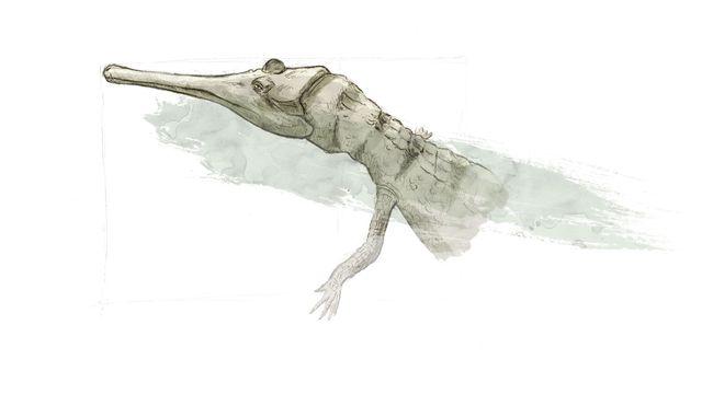 Représentation d'artiste de Metriorhynchus, un crocodile marin.  ikonaut Jurassica [ikonaut - Jurassica]