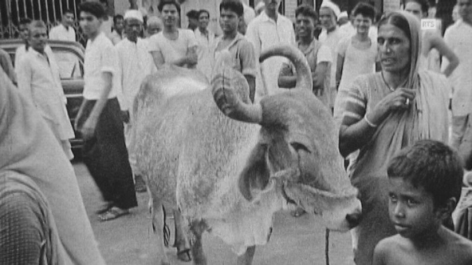L'industrie suisse en Inde en 1961. [RTS]