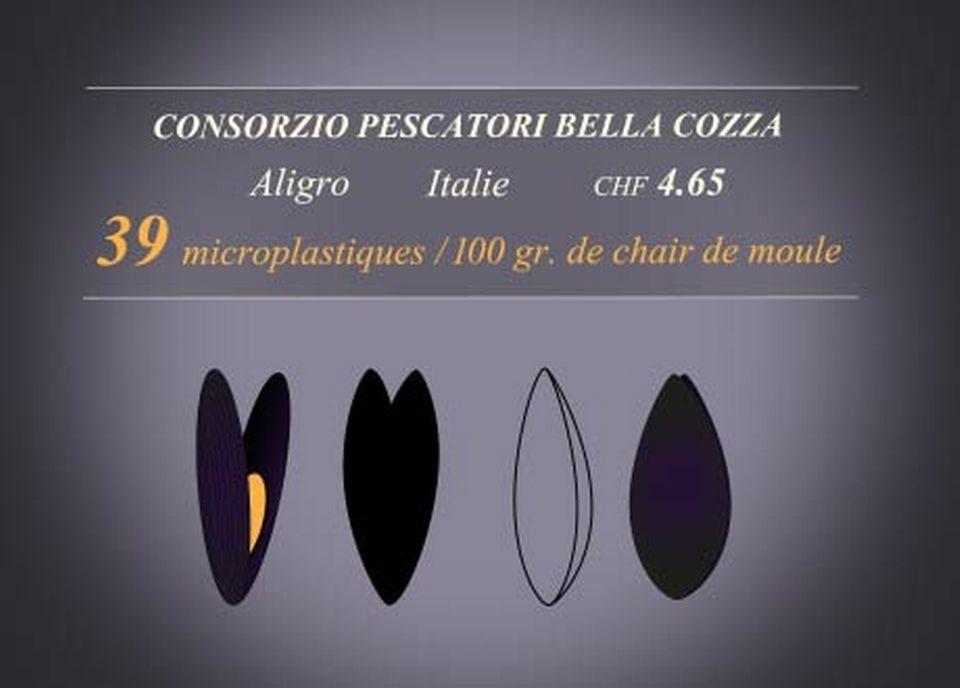 Pescatori Bella Cozza [RTS]