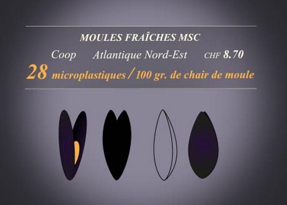 Moules Fraîches MSC [RTS]